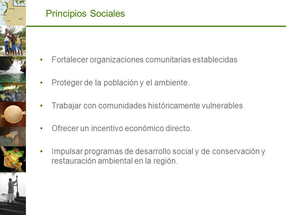 Principios Sociales Fortalecer organizaciones comunitarias establecidas. Proteger de la población y el ambiente.