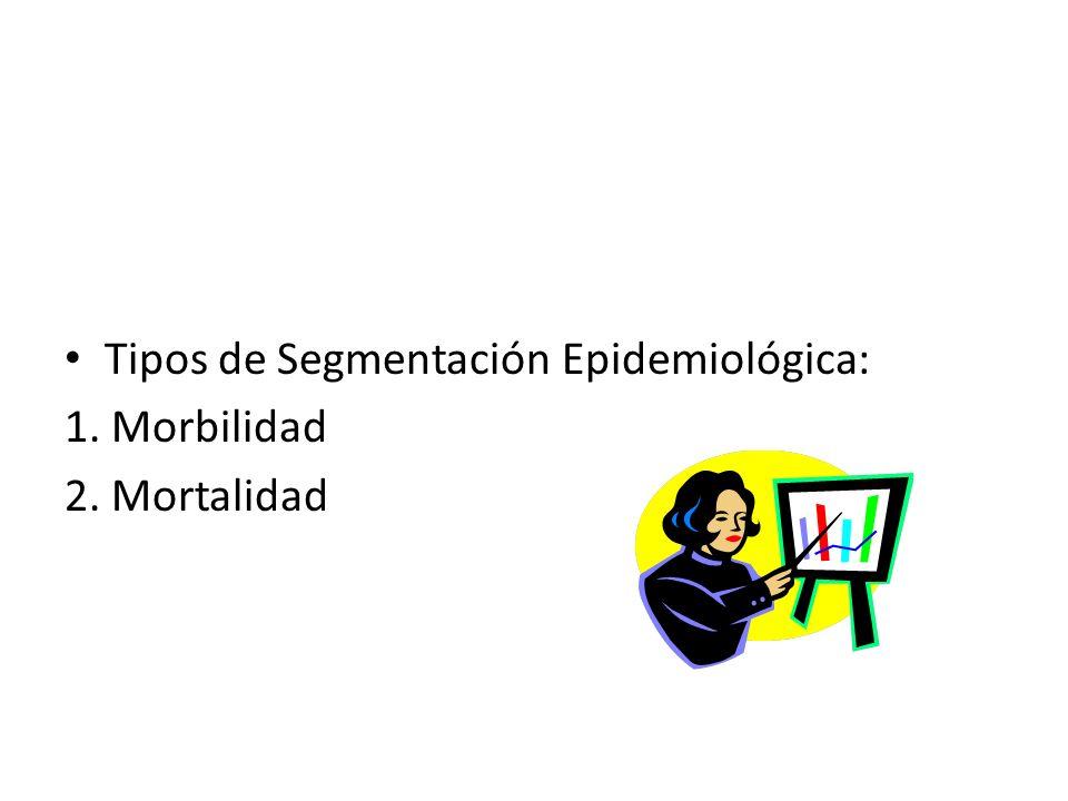 Tipos de Segmentación Epidemiológica: