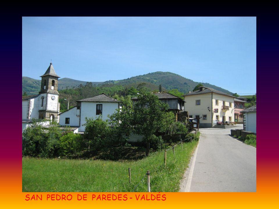 SAN PEDRO DE PAREDES - VALDÉS