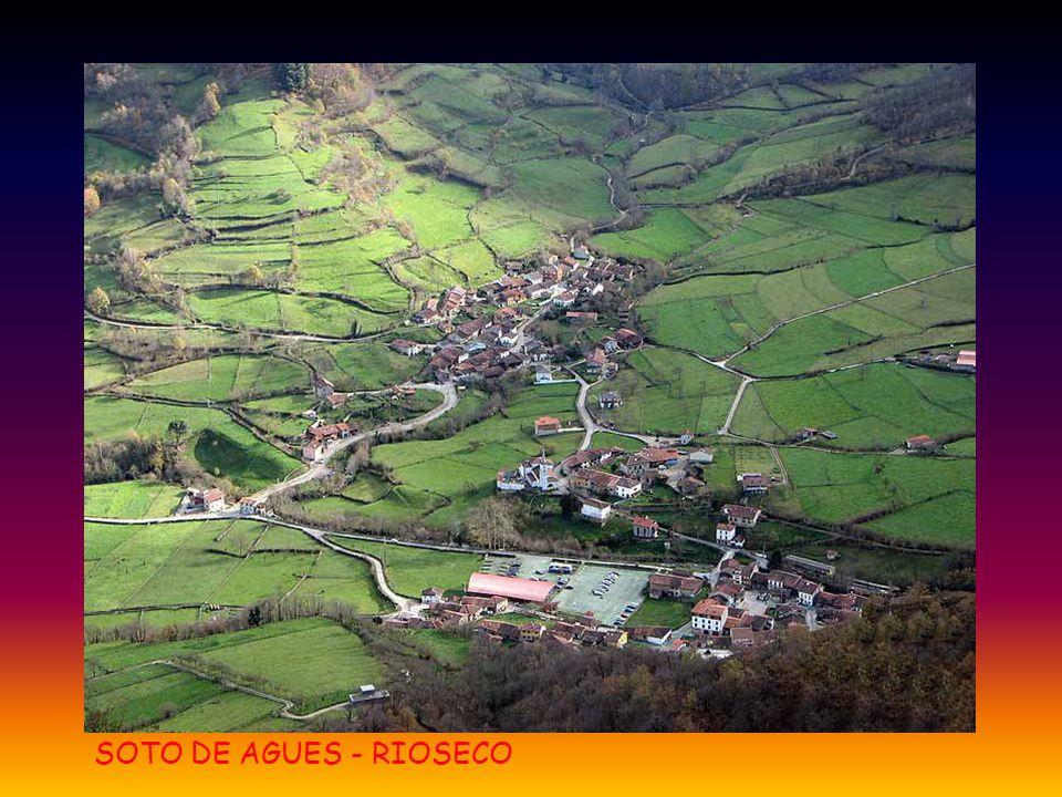 SOTO DE AGUES - RIOSECO