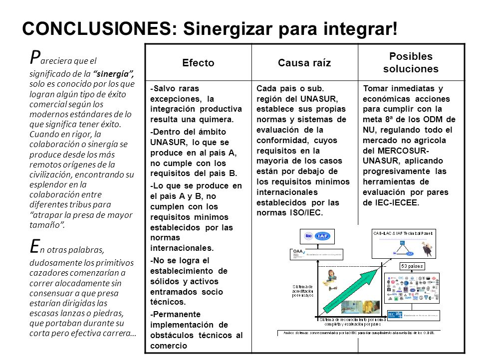 CONCLUSIONES: Sinergizar para integrar!