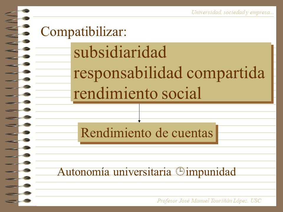 subsidiaridad responsabilidad compartida rendimiento social