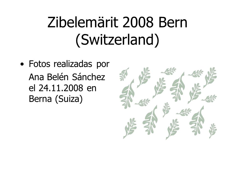 Zibelemärit 2008 Bern (Switzerland)