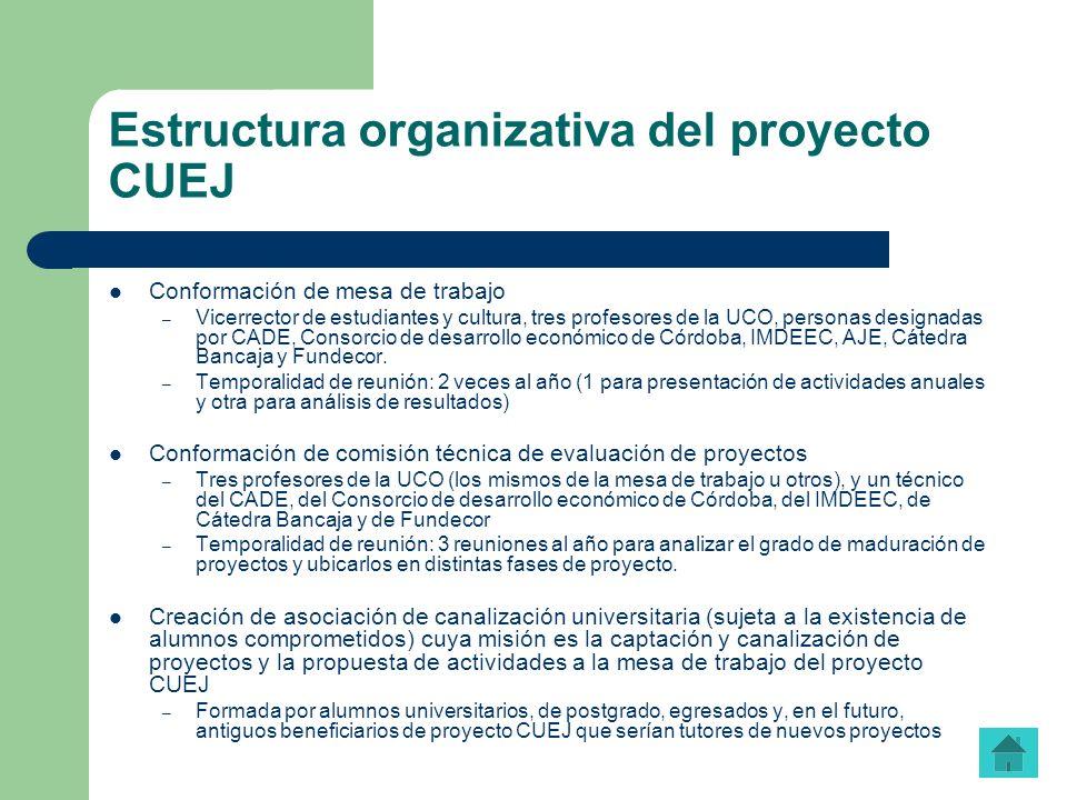 Estructura organizativa del proyecto CUEJ