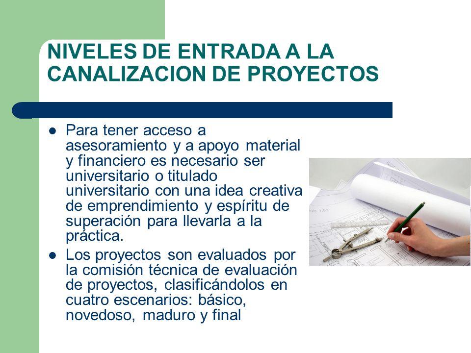 NIVELES DE ENTRADA A LA CANALIZACION DE PROYECTOS