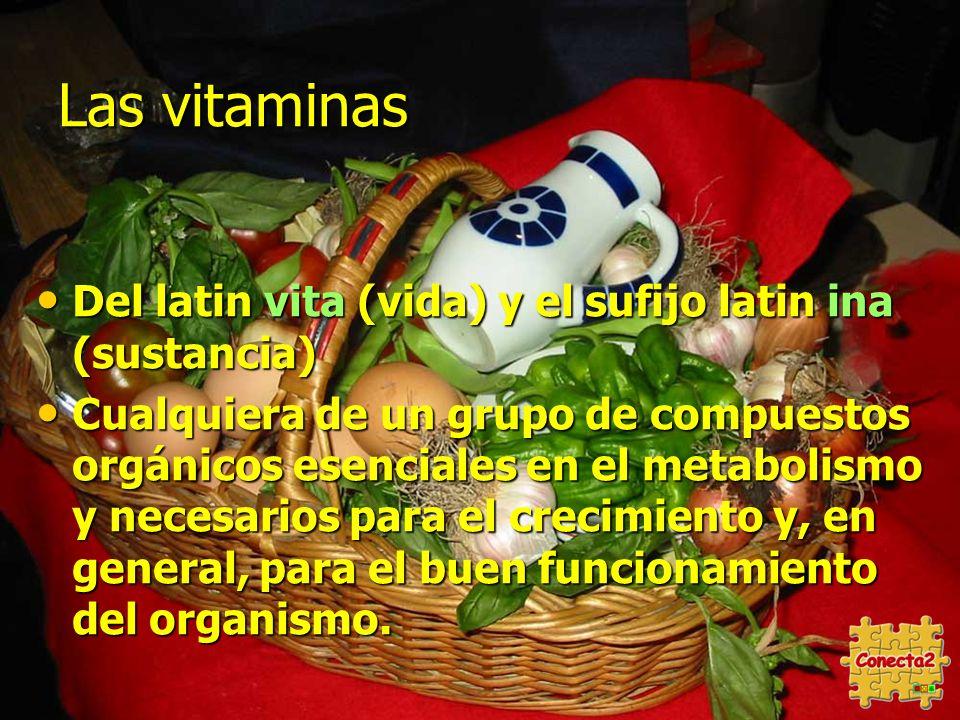 Las vitaminas Del latin vita (vida) y el sufijo latin ina (sustancia)