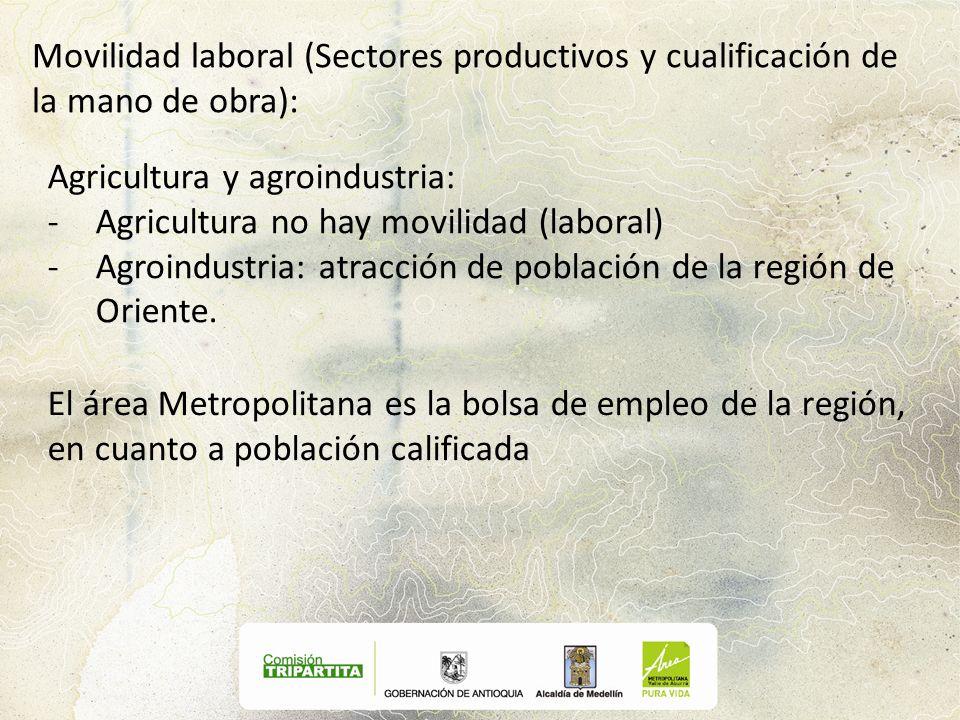 Movilidad laboral (Sectores productivos y cualificación de la mano de obra):