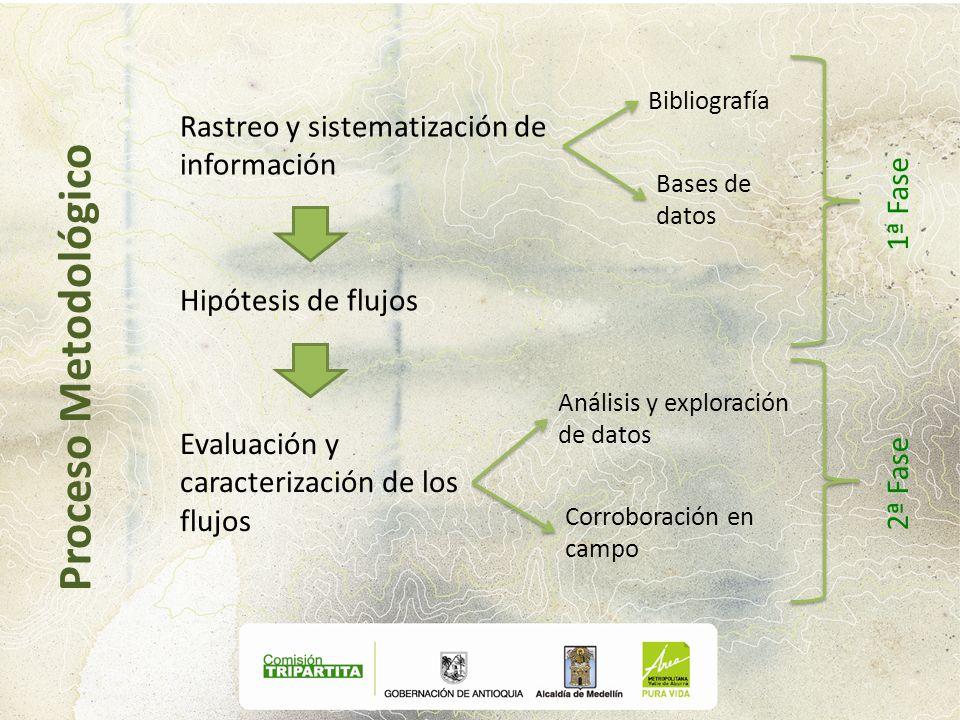 Proceso Metodológico Rastreo y sistematización de información 1ª Fase