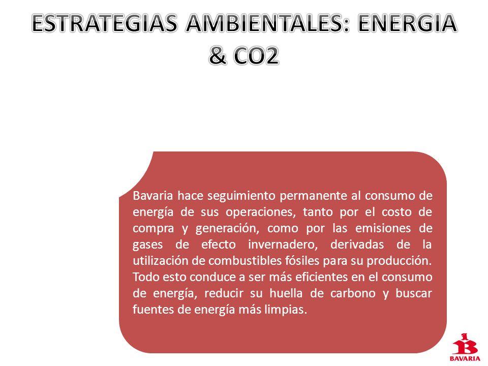 ESTRATEGIAS AMBIENTALES: ENERGIA & CO2