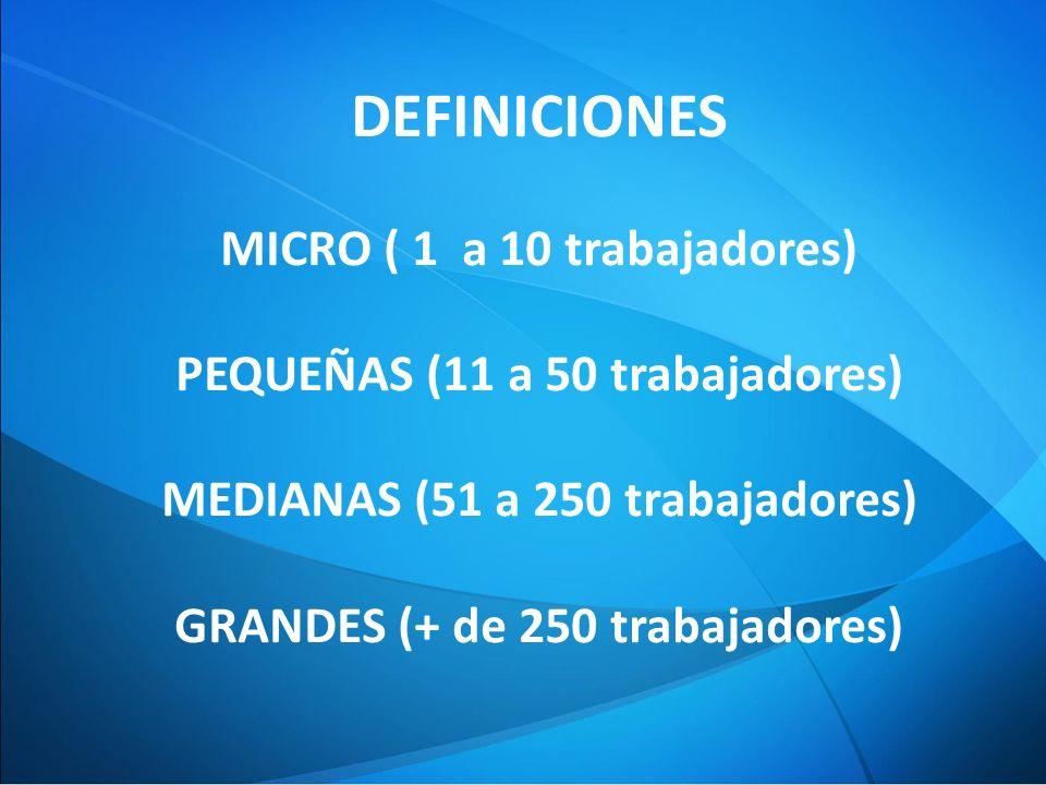 DEFINICIONES MICRO ( 1 a 10 trabajadores)