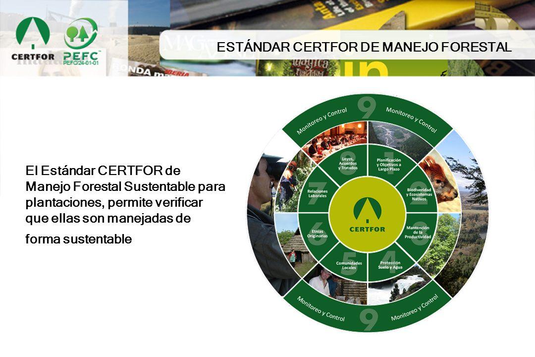 ESTÁNDAR CERTFOR DE MANEJO FORESTAL
