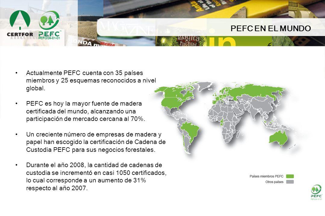 PEFC EN EL MUNDO Actualmente PEFC cuenta con 35 países miembros y 25 esquemas reconocidos a nivel global.
