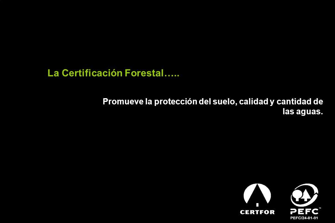 La Certificación Forestal…..