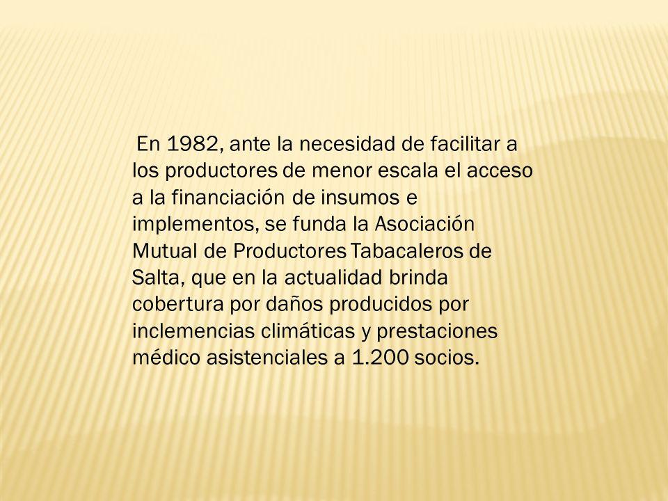 En 1982, ante la necesidad de facilitar a los productores de menor escala el acceso a la financiación de insumos e implementos, se funda la Asociación Mutual de Productores Tabacaleros de Salta, que en la actualidad brinda cobertura por daños producidos por inclemencias climáticas y prestaciones médico asistenciales a 1.200 socios.