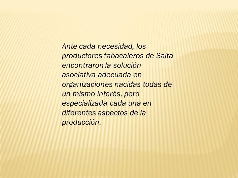 Ante cada necesidad, los productores tabacaleros de Salta encontraron la solución asociativa adecuada en organizaciones nacidas todas de un mismo interés, pero especializada cada una en diferentes aspectos de la producción.