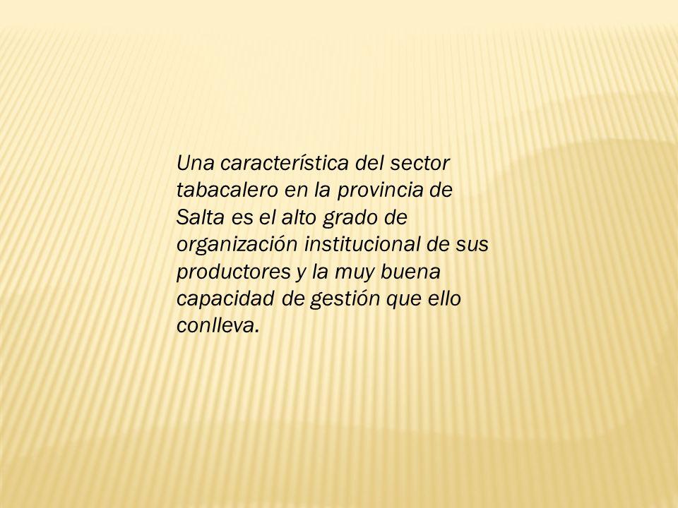 Una característica del sector tabacalero en la provincia de Salta es el alto grado de organización institucional de sus productores y la muy buena capacidad de gestión que ello conlleva.
