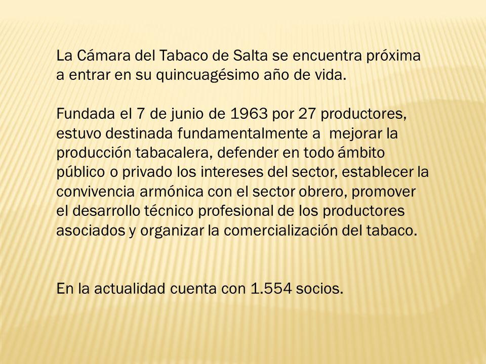 La Cámara del Tabaco de Salta se encuentra próxima a entrar en su quincuagésimo año de vida.