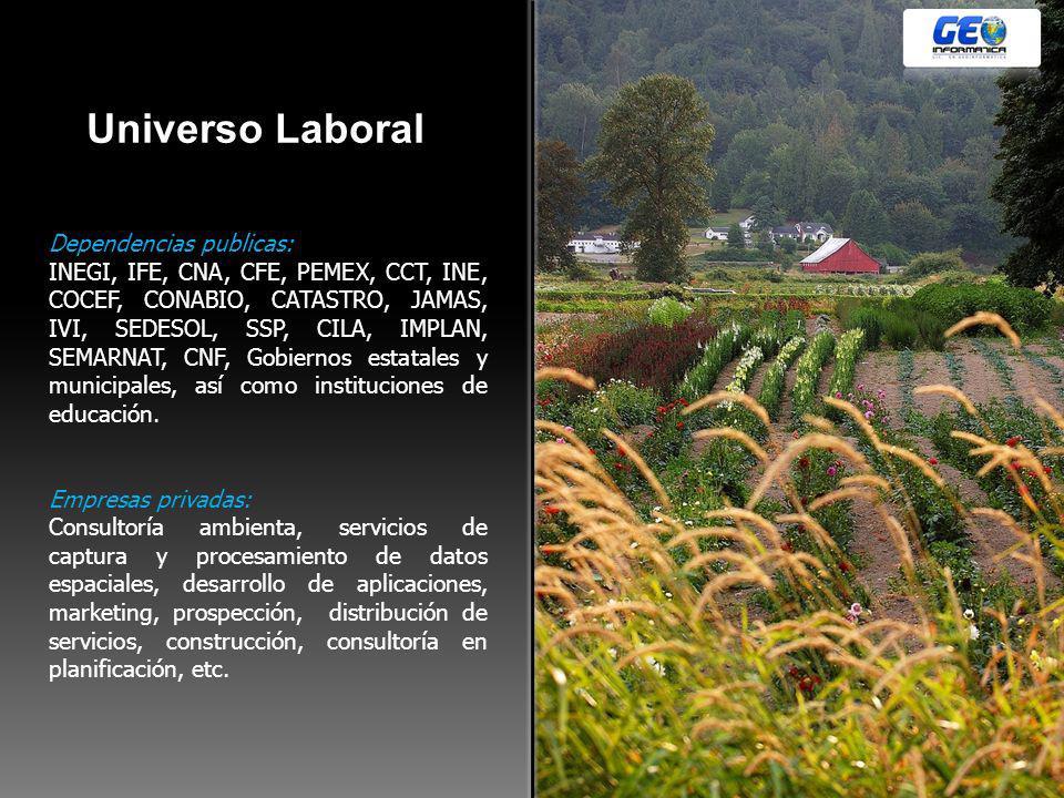 Universo Laboral Dependencias publicas: