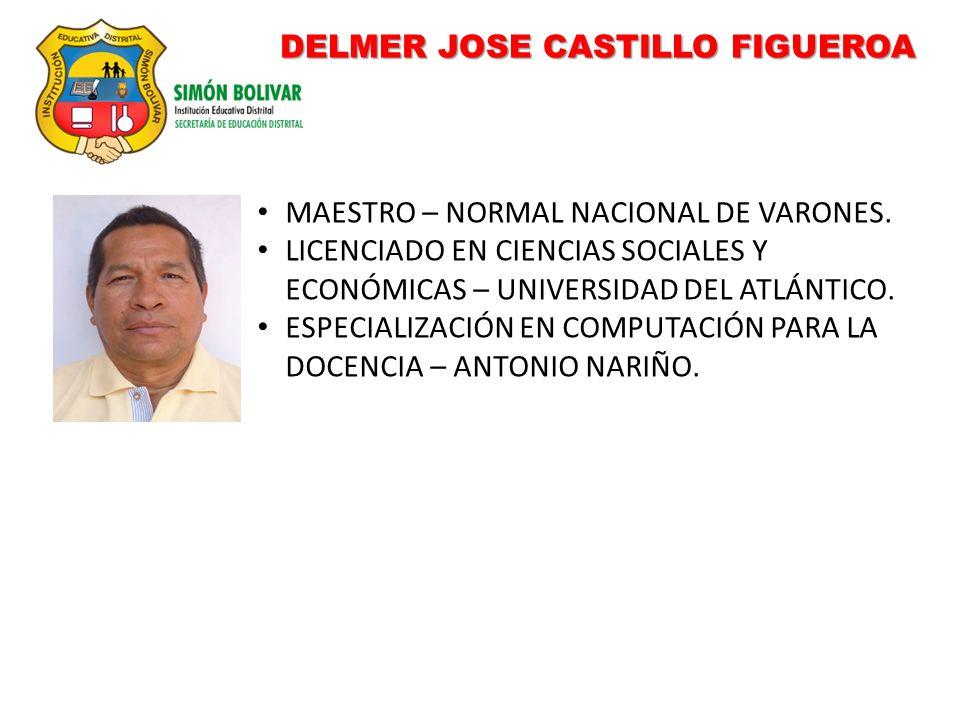 DELMER JOSE CASTILLO FIGUEROA