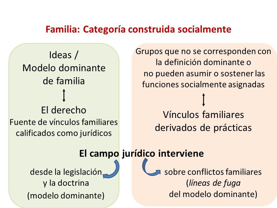 Familia: Categoría construida socialmente El campo jurídico interviene