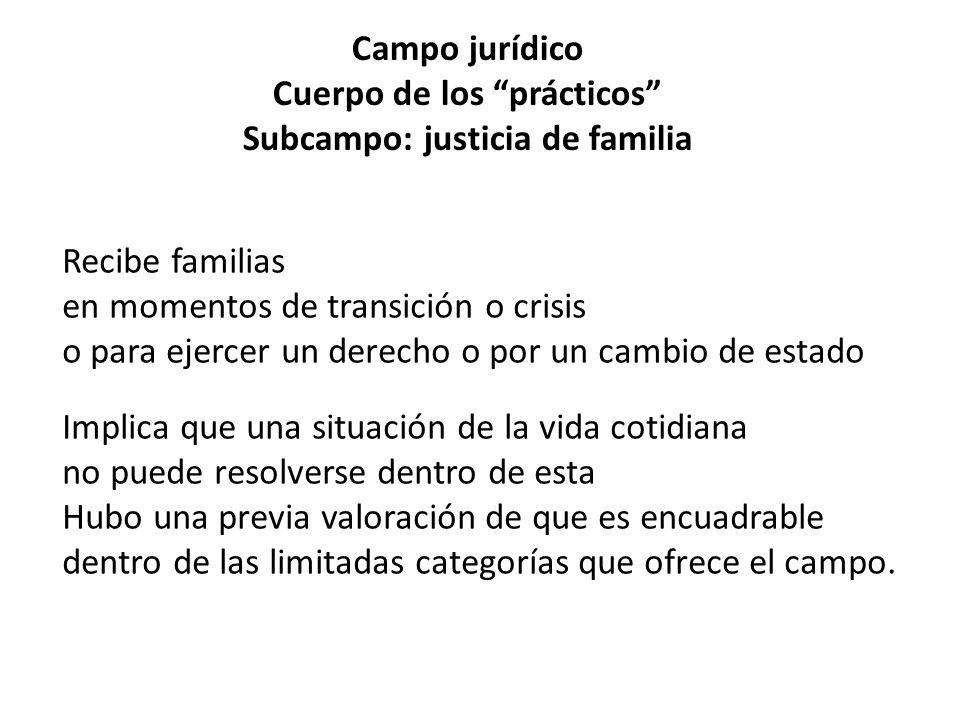 Campo jurídico Cuerpo de los prácticos Subcampo: justicia de familia