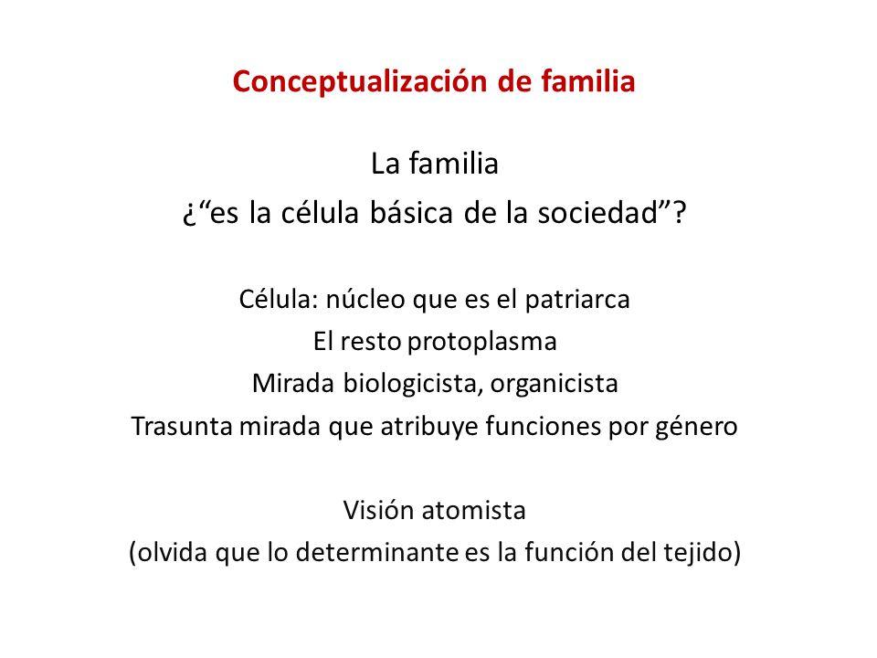 Conceptualización de familia