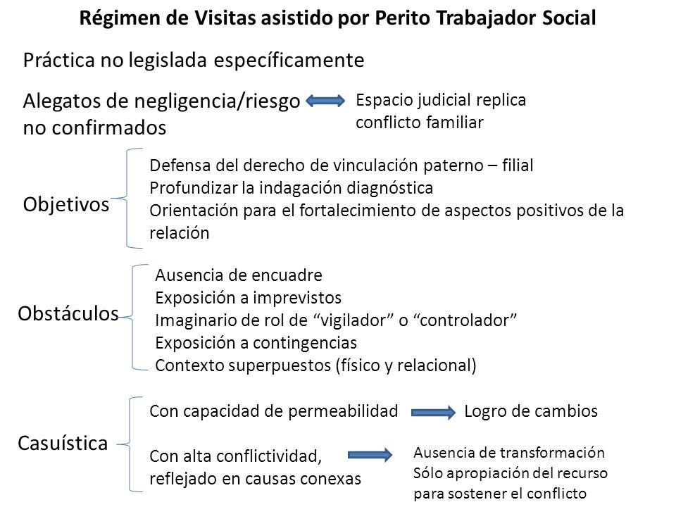 Régimen de Visitas asistido por Perito Trabajador Social