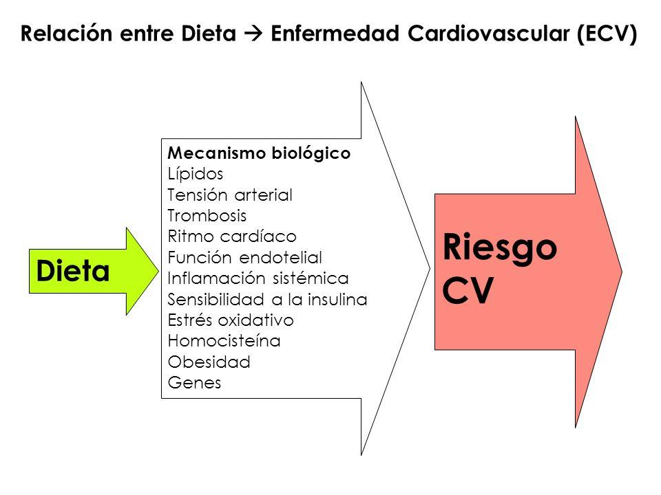 Riesgo CV Dieta Relación entre Dieta  Enfermedad Cardiovascular (ECV)