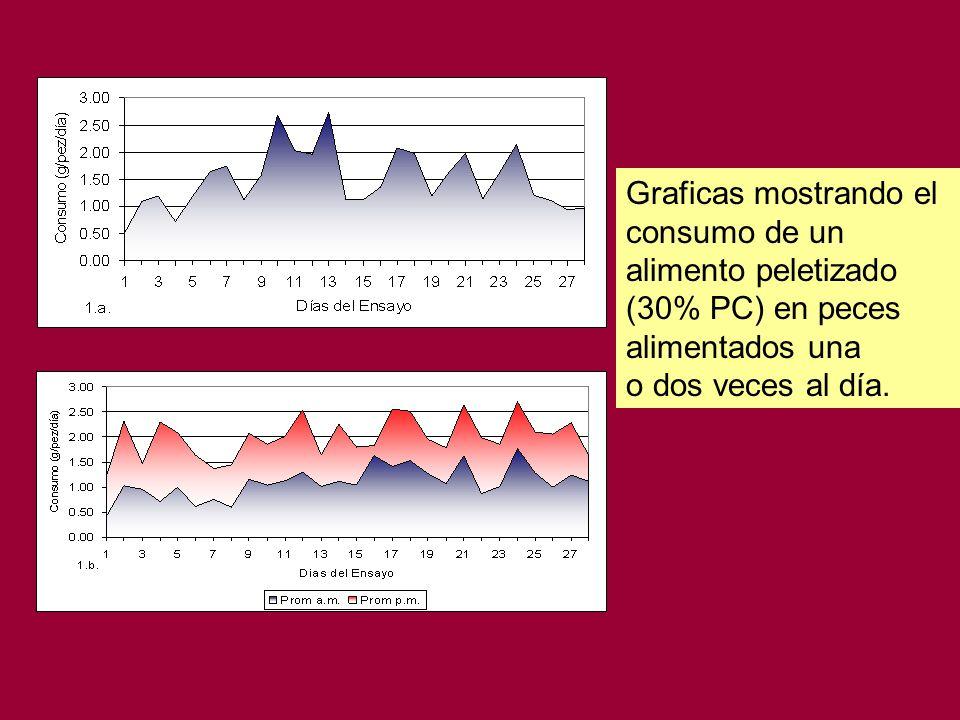 Graficas mostrando el consumo de un alimento peletizado (30% PC) en peces alimentados una.