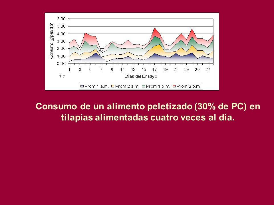 Consumo de un alimento peletizado (30% de PC) en