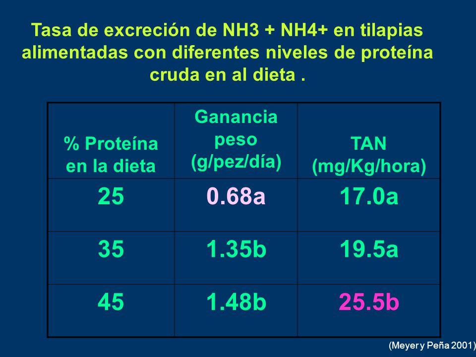 Tasa de excreción de NH3 + NH4+ en tilapias