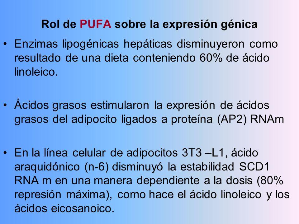 Rol de PUFA sobre la expresión génica