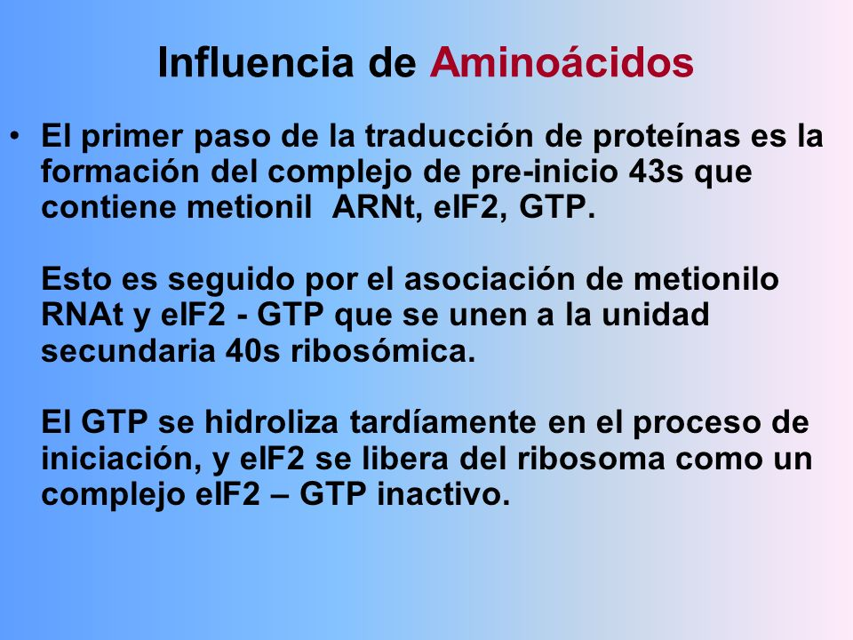 Influencia de Aminoácidos