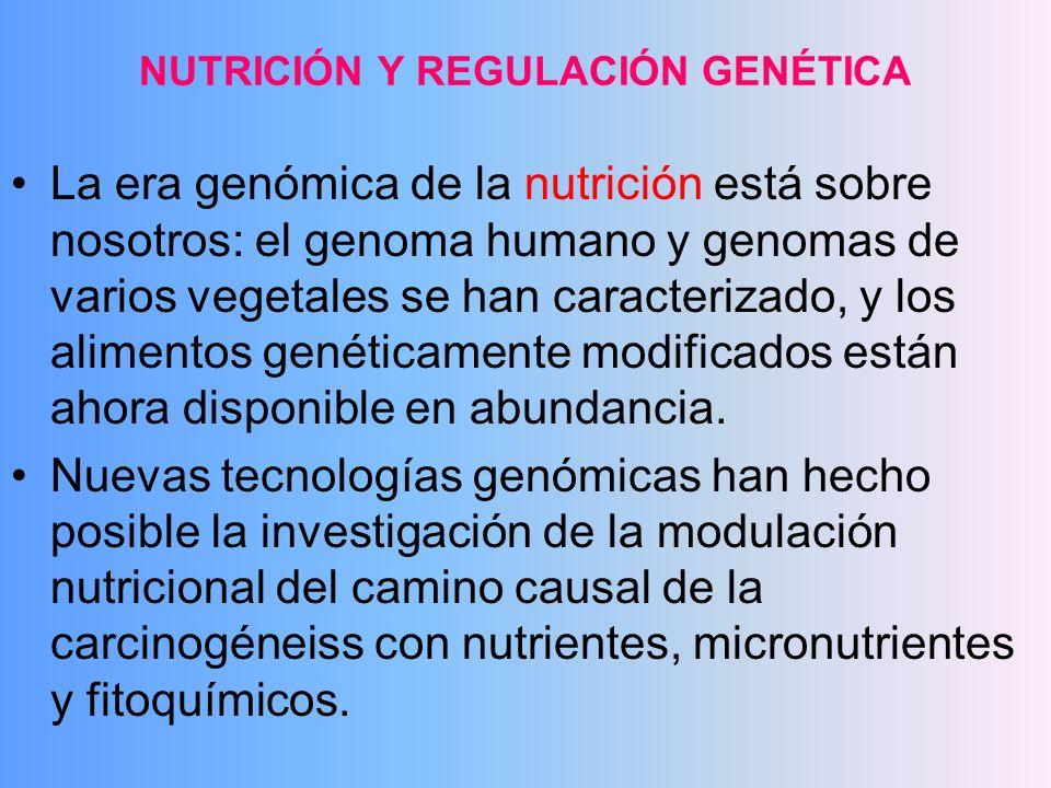 NUTRICIÓN Y REGULACIÓN GENÉTICA