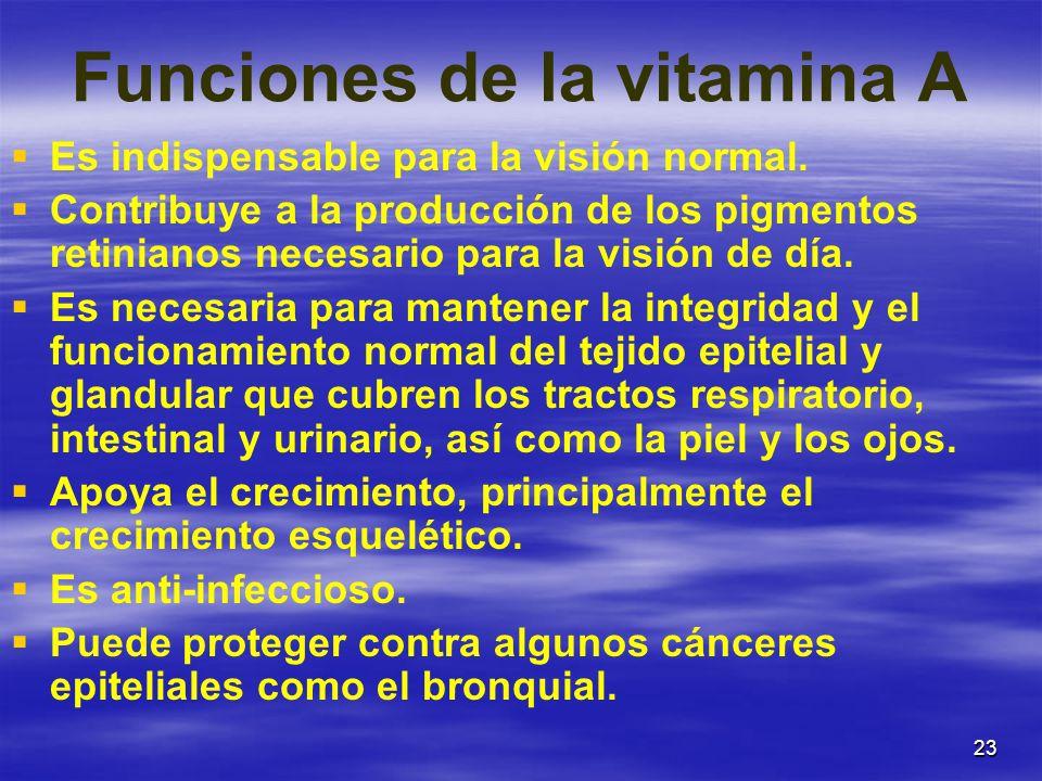 Funciones de la vitamina A