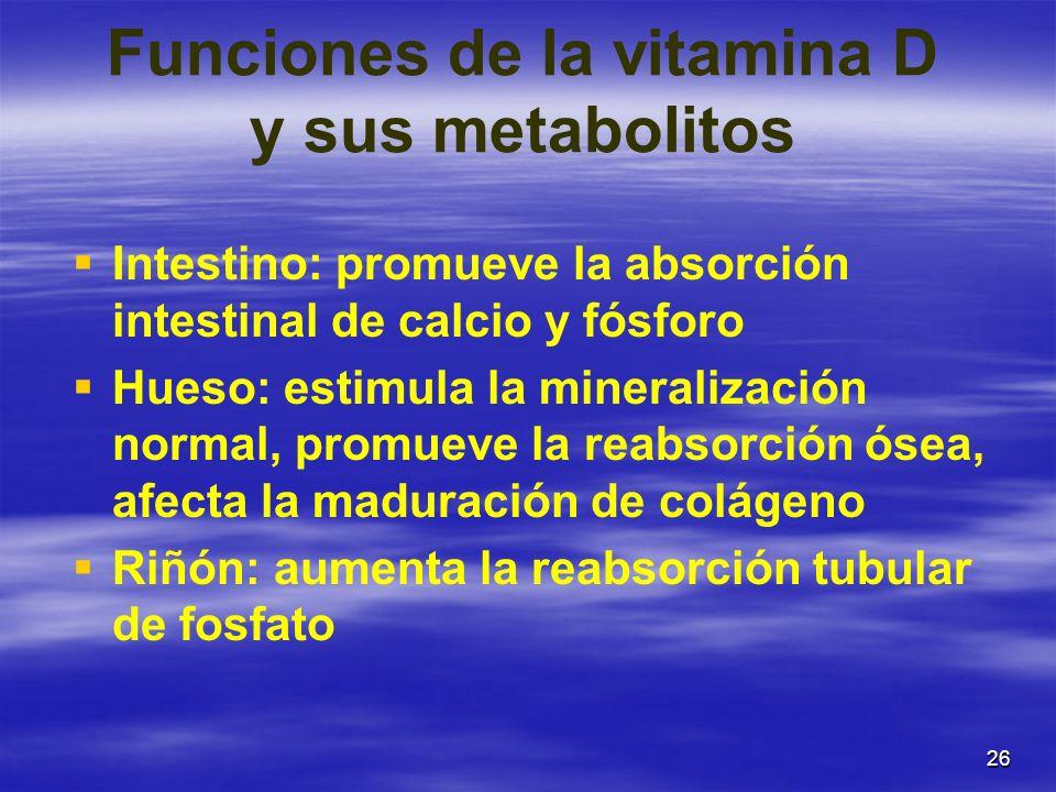 Funciones de la vitamina D y sus metabolitos