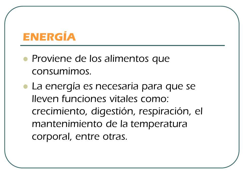 ENERGÍA Proviene de los alimentos que consumimos.