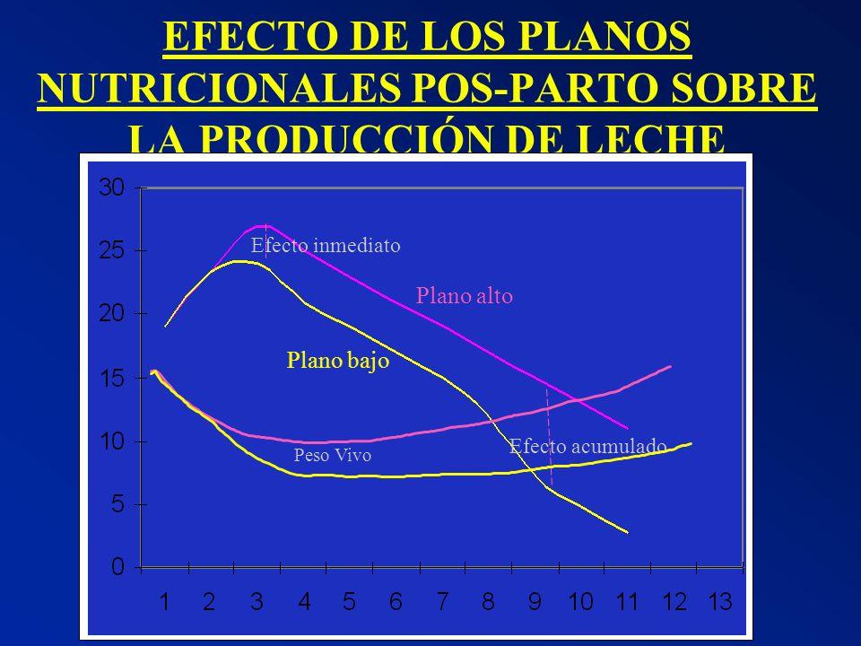 EFECTO DE LOS PLANOS NUTRICIONALES POS-PARTO SOBRE LA PRODUCCIÓN DE LECHE