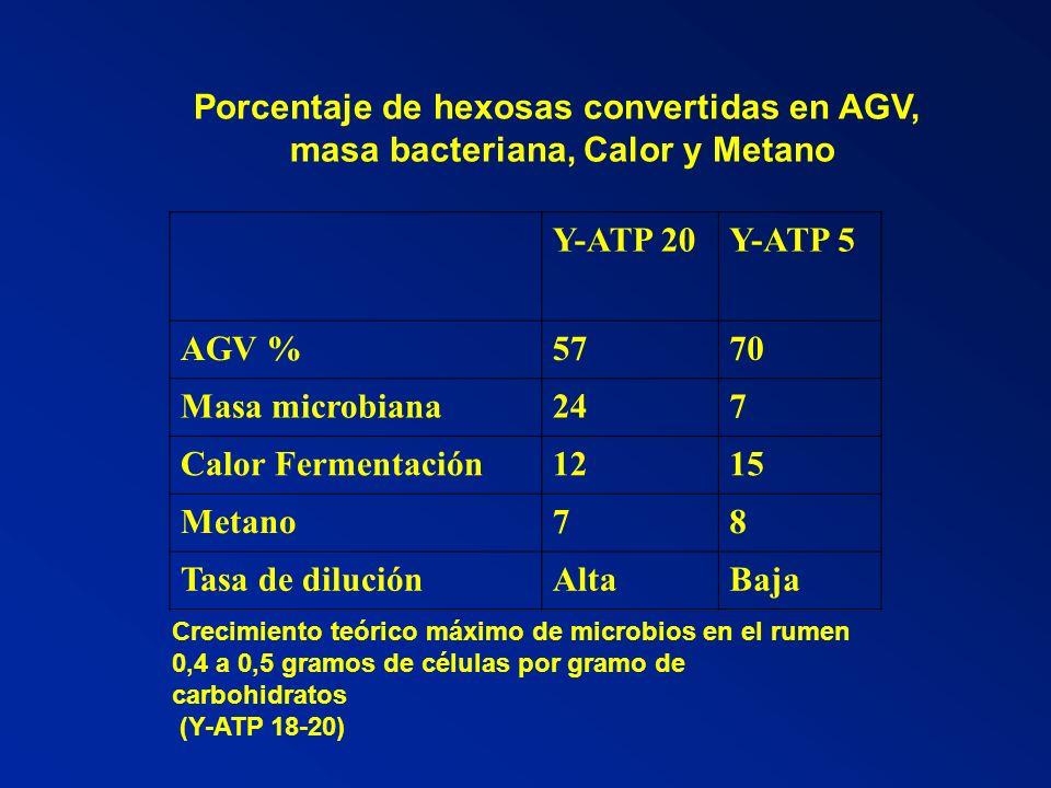 Porcentaje de hexosas convertidas en AGV,