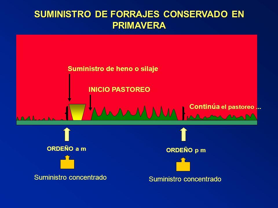 SUMINISTRO DE FORRAJES CONSERVADO EN PRIMAVERA