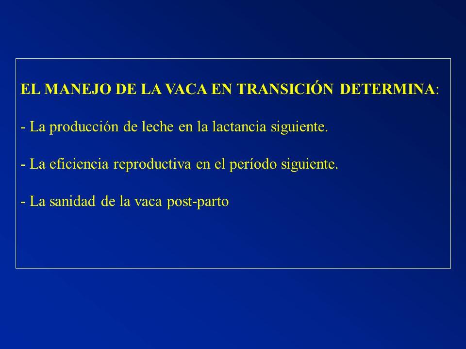 EL MANEJO DE LA VACA EN TRANSICIÓN DETERMINA: