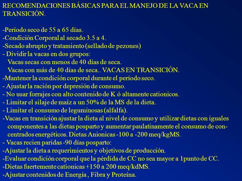 RECOMENDACIONES BÁSICAS PARA EL MANEJO DE LA VACA EN