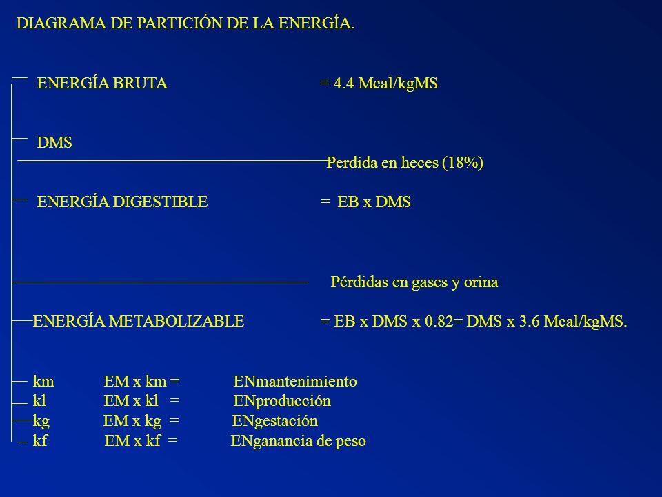 DIAGRAMA DE PARTICIÓN DE LA ENERGÍA.