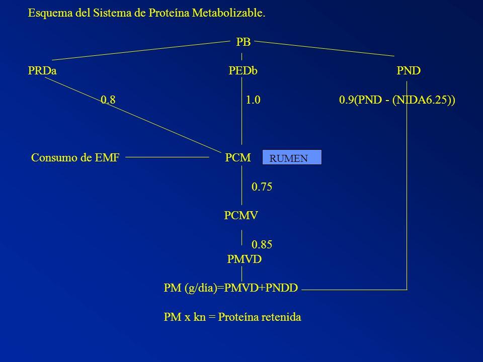 Esquema del Sistema de Proteína Metabolizable. PB PRDa PEDb PND