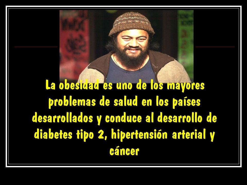 La obesidad es uno de los mayores problemas de salud en los países desarrollados y conduce al desarrollo de diabetes tipo 2, hipertensión arterial y cáncer