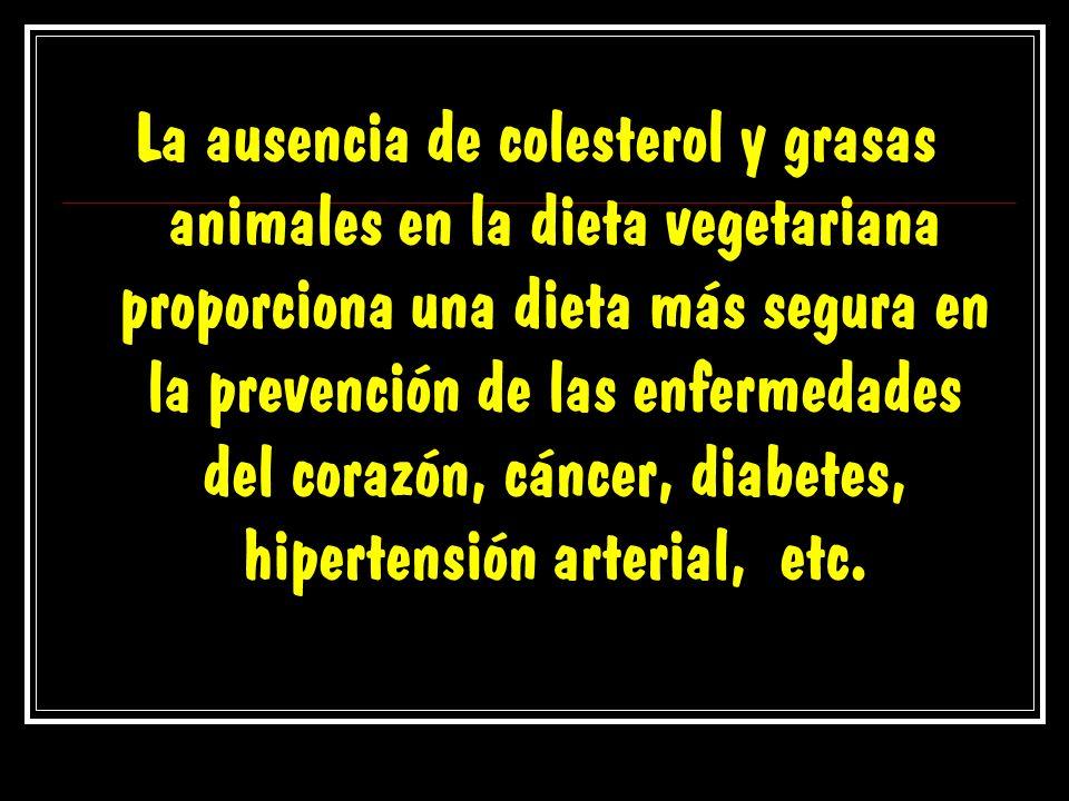 La ausencia de colesterol y grasas animales en la dieta vegetariana proporciona una dieta más segura en la prevención de las enfermedades del corazón, cáncer, diabetes, hipertensión arterial, etc.