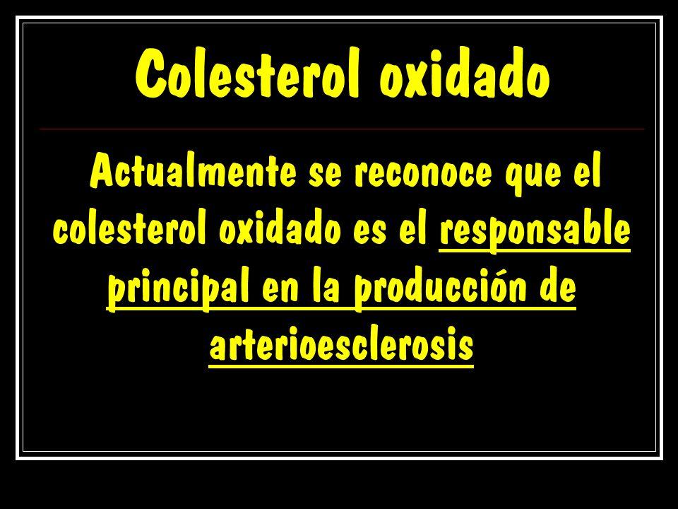 Colesterol oxidado Actualmente se reconoce que el colesterol oxidado es el responsable principal en la producción de arterioesclerosis.