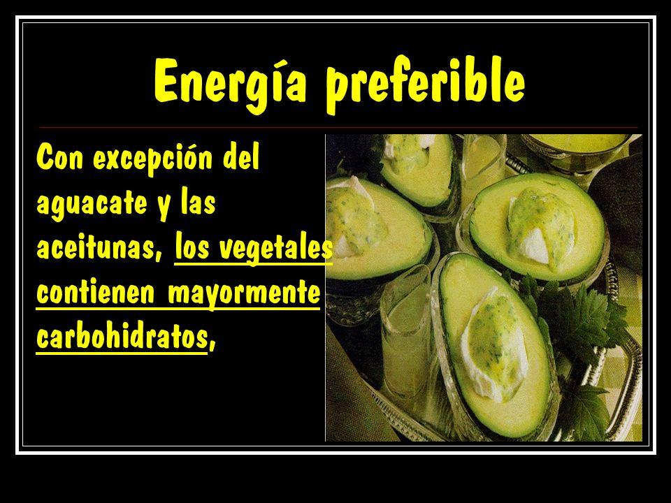 Energía preferible Con excepción del aguacate y las aceitunas, los vegetales contienen mayormente carbohidratos,