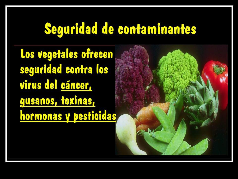 Seguridad de contaminantes