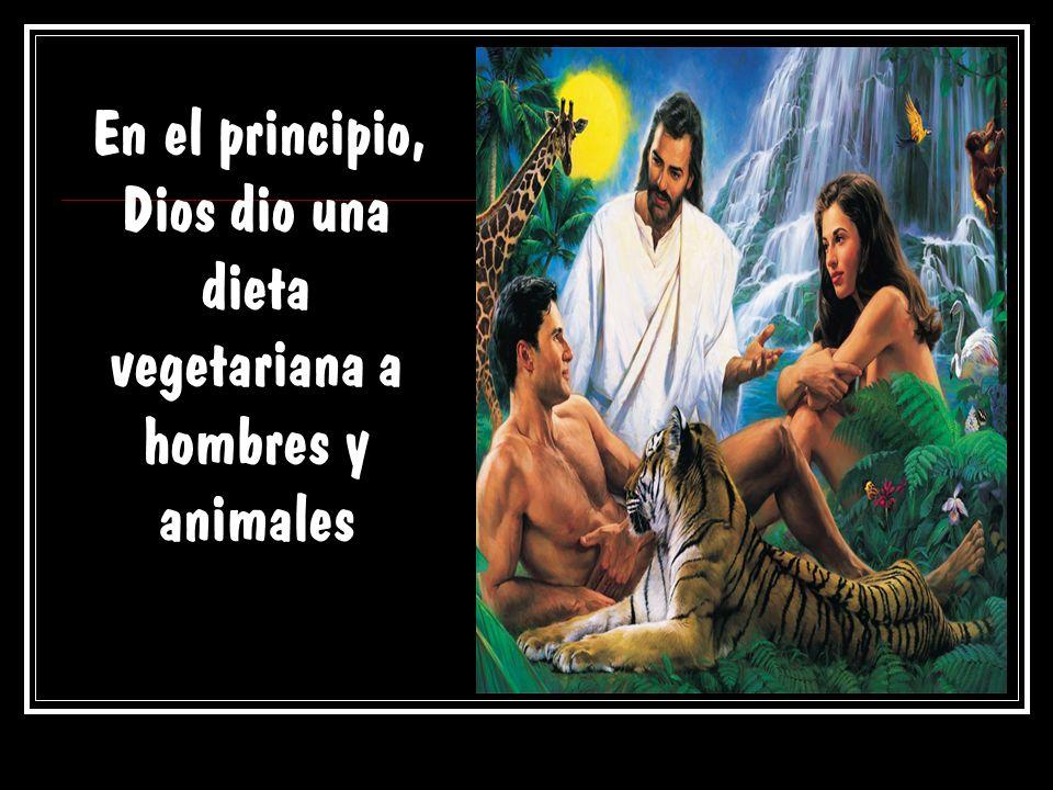 En el principio, Dios dio una dieta vegetariana a hombres y animales